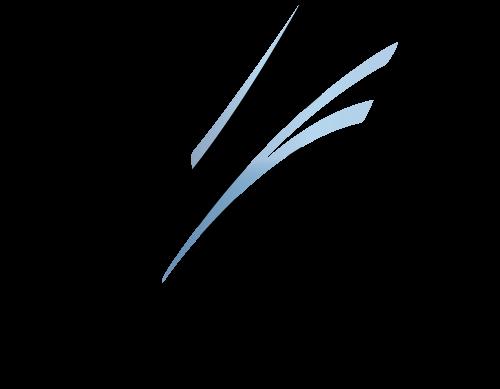 gemini catamaran logo